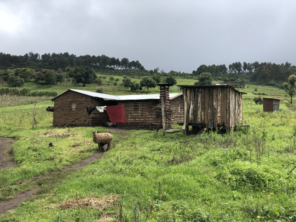 Paradigmbuildinggroup-kenya-expansion